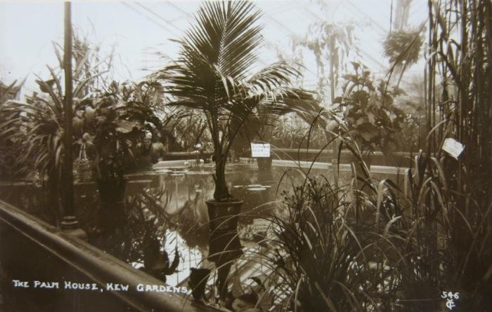 Palm House Kew