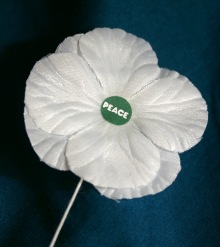 white peace pledge union poppy